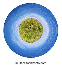 ummer spikelet grass field - little planet - spherical...