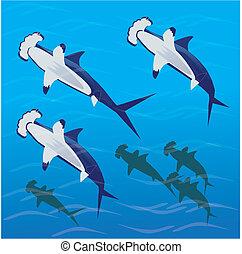 Hammer Time - Hammer head Sharks in tranquil ocean