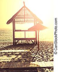 Palapa - Beach scene