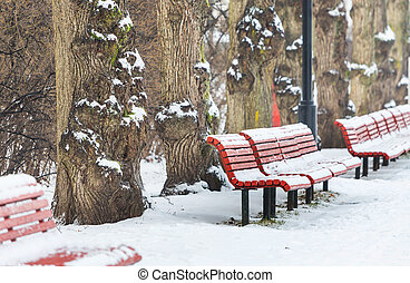 Winter bench - Winter season in park