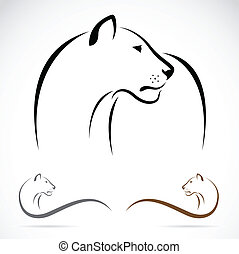 Vector image of an female lion on white background.