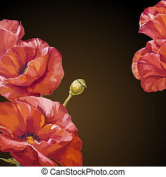 Card with poppies flowers on dark background.