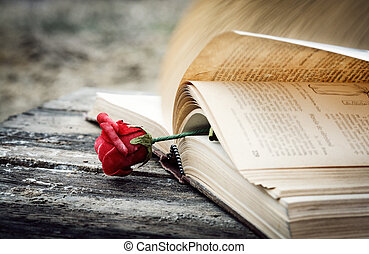 book and rose - closed book on wood desk with key
