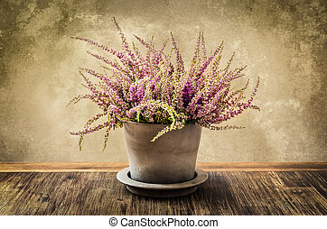 Detail of nice heather flower in pot, vintage style - Detail...