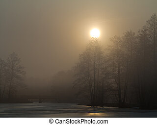 Misty morning over peaceful pond - Misty sunrise over...