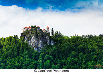 Bled castle in forests - Bled castle on the high mountain...