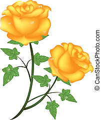 yellow roses - Is a EPS 10 Illustrator file without...