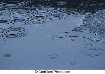 Water Puddle - Rain in a puddle