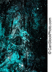 Blue Forest Magic - Large old-growth trees at night with...