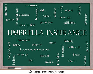 Umbrella Insurance Word Cloud Concept on a Blackboard with...