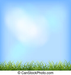 Green grass blue sky natural background - Green grass and...