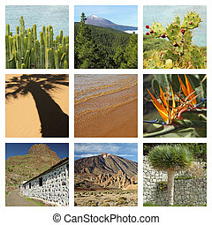 images of wonderful Tenerife island collage