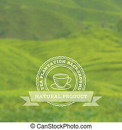 Tea plantation vector background