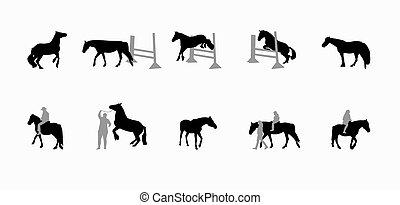 Horse with a Rider Runs, Hops, Gallops.