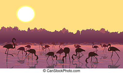 Flamingos at sunset in the river - Horizontal illustration...