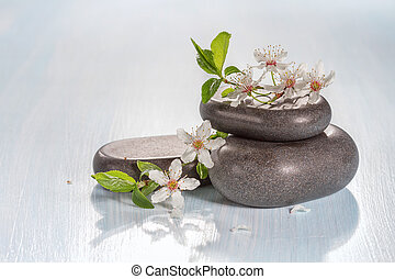 Spa stones and a branch of a flowering tree