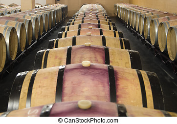 barrels of red wine - barrels for red wine in cellar