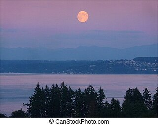 Moon Over Puget Sound, Tacoma, WA - super moon rise over...