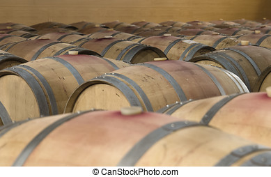 Many wine barrels - group of wine barrels in cellar