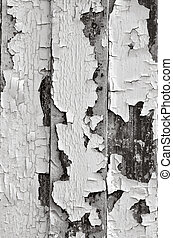 Chipped old paint background texture. Vertical(BW)