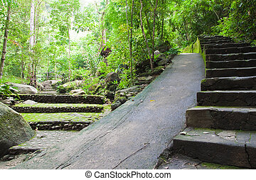 Walk way in Namtokphlio National Park,Chantaburi Province,...