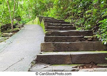 Walk way in Namtokphlio National Park,Chantaburi Province,...