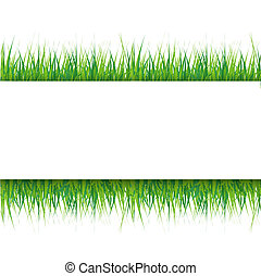 grassy background with space for inscriptions - Grassy...