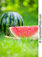 Watermelon outdoors in summer park