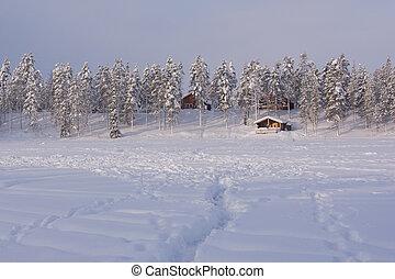 Lapland - Bevroren meer in Lapland