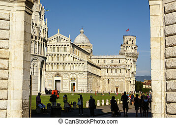 Pisa Cathedral Square with green grass on a meadow and clear...
