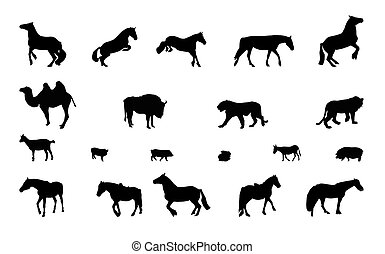 Silhouette of Wild and Domestic Animals Black and White -...