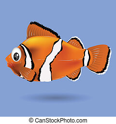clownfish - colorful illustration with clownfish for your...
