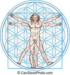 Vitruvian Man In Flower of Life - Vitruvian Man fits in the...