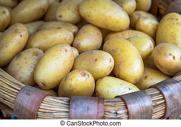 Basket of Pototoes (1)