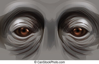 Eyes of an orangutan - Illustration of the eyes of an...