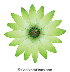 A flower with green petals - Illustration of a flower with...