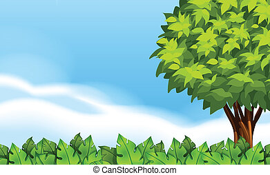 A summer scenery with green plants