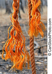 Old rope 1 - A close up of the old orange rope.