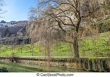 Foot path along river - Foot path along the river Alzette in...
