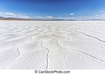 The Salinas Grandes in Jujuy, Argentina. - The Salinas...