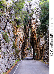 Road to Sa Calobra in Serra de Tramuntana - mountains on...