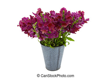 Violet Snap Dragon Bouquet in a tin bucket - a bouquet of...