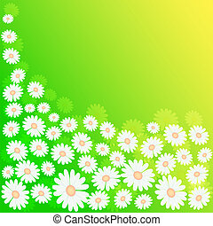 spring meadow - green spring meadow background with flowers