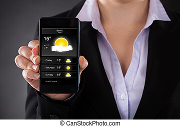Businessperson Showing Weather Forecast On Mobile Phone -...