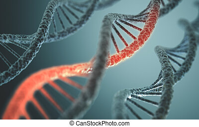 DNA Structure - Long structure of the DNA double helix in...