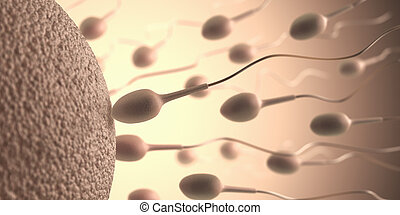 Reproduction - A lot of sperms going to the ovule. Image...