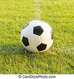 soccer ball on green grass