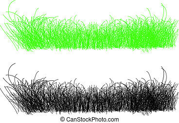 detailed illustration of thin strands of grass in green and blac