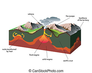 volcano - scientific illustration of a section of a volcano