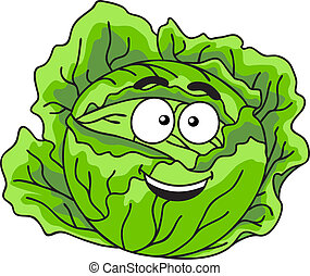 Fresh green leafy cabbage vegetable - Head of farm fresh...